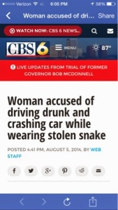 NY woman wearing stolen snake