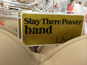 Lilyette Stay There Power Band